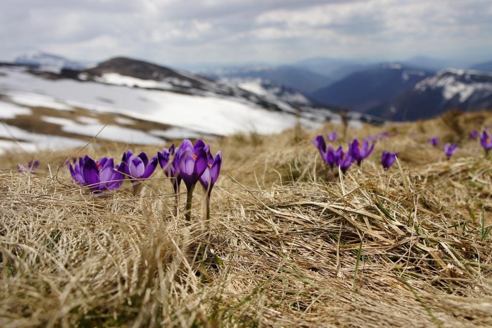 Styl przejściowy – czyli co nosić pomiędzy zimą, a wiosną?
